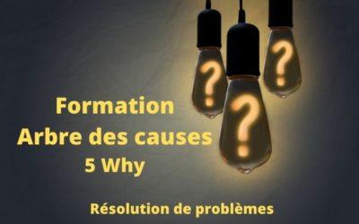 Formation Arbre des causes: 5 Pourquoi (5 Why)