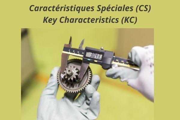 caractéristiques spéciales (CS)