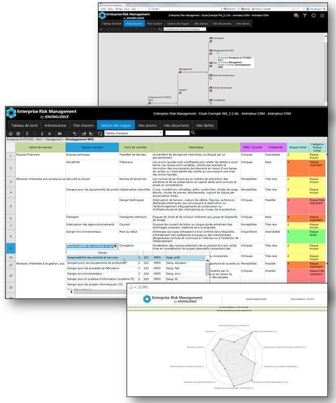ISO 9001:2015, ONR 49000 : Software for Enterprise Risk Management