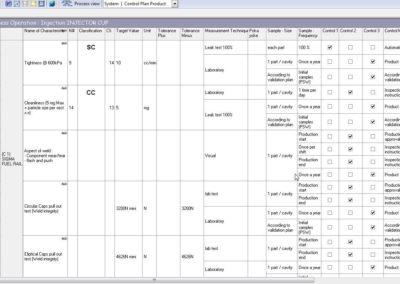 Control Plan in English
