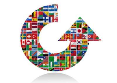 Produire au niveau mondial : AMDEC multisite et multilangue