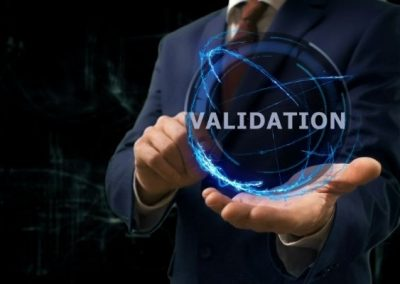 ISO 14971 Software Validation File